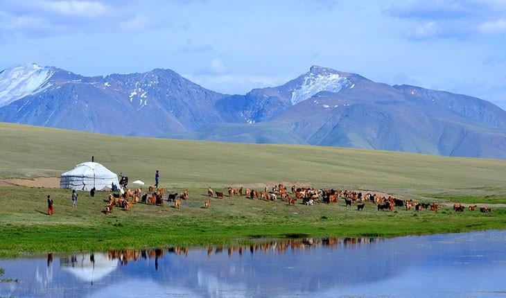 10 نکته ی کاربردی در سفر به مغولستان