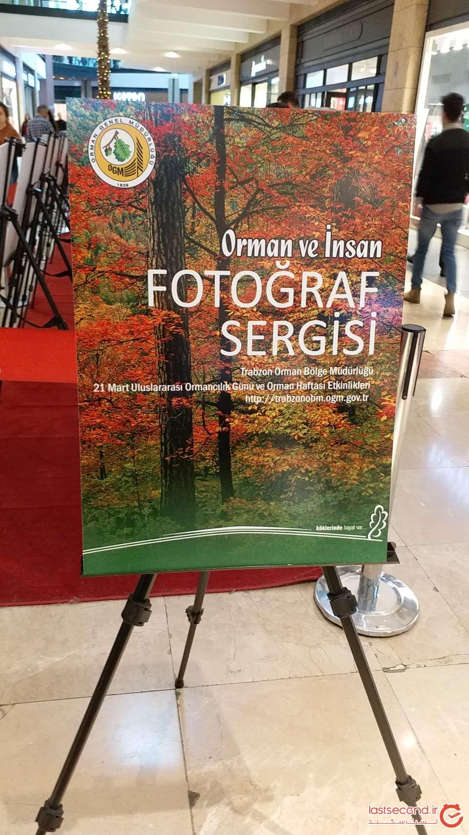 نمایشگاه عکاسی انسان و جنگل