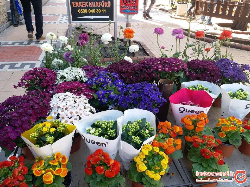 گل فروشی در مرکز ترابزون