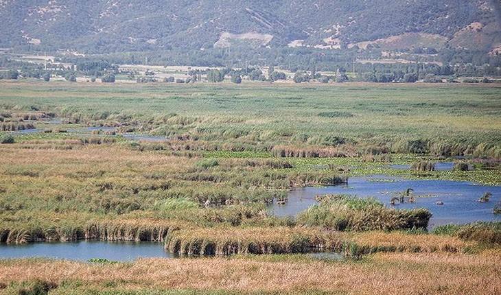 خطر در کمین دریاچه ی زریبار