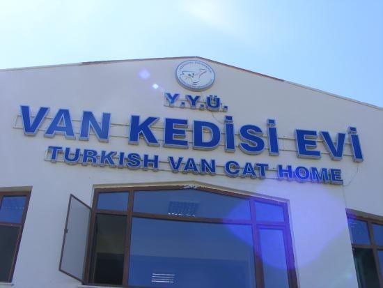 House of Van Cats