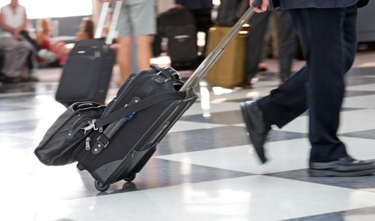 مسافری با 20 مار پنهان در چمدانش در فرودگاه دستگیر شد