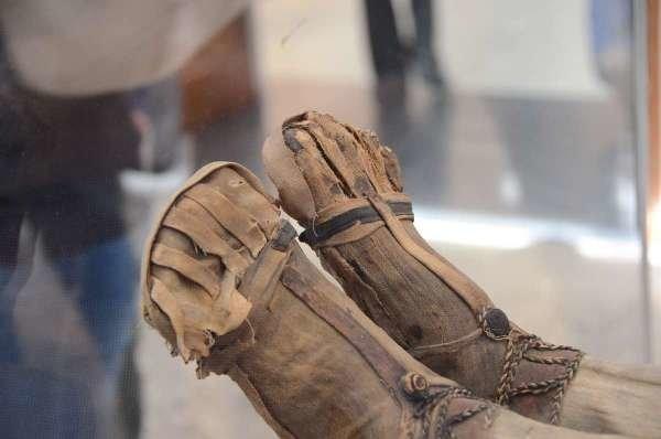 مومیایی چند هزار ساله هلندی در تهران