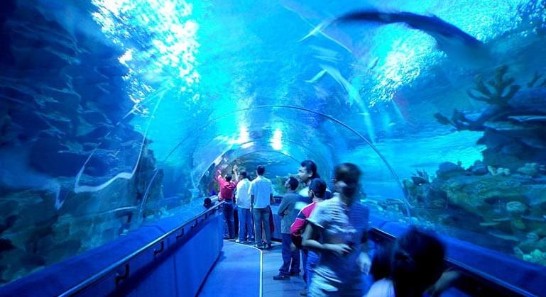 Aquaria KLCC (5).jpg