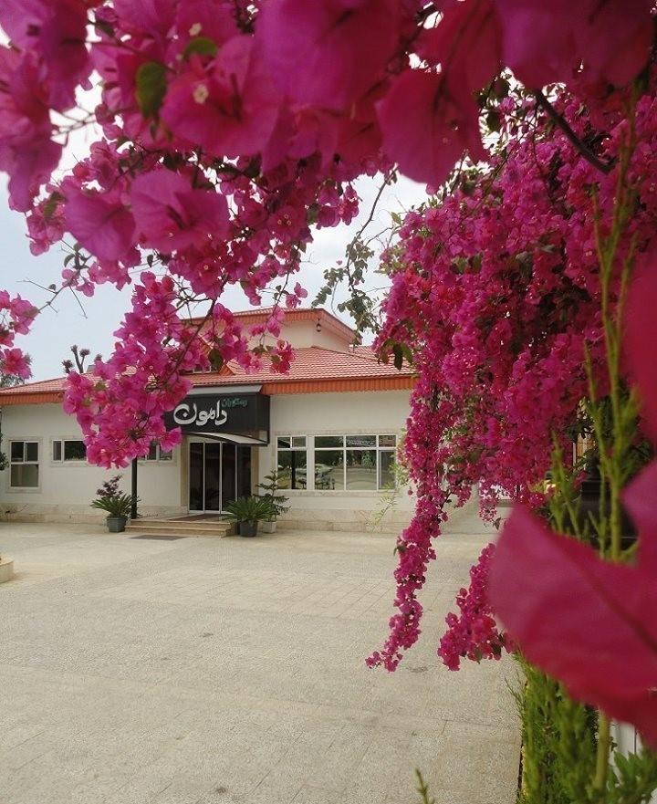 Damoun Restaurant (9).jpg