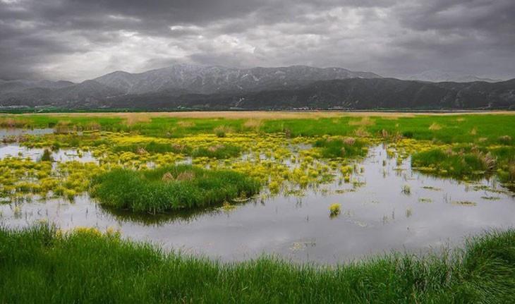دریاچه زریبار بزرگترین دریاچه آب شیرین در کردستان