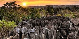 ماداگاسکار سرزمین رازها
