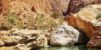 سفر به سرزمین نخل و شالی ( سفرنامه طبس و حومه )
