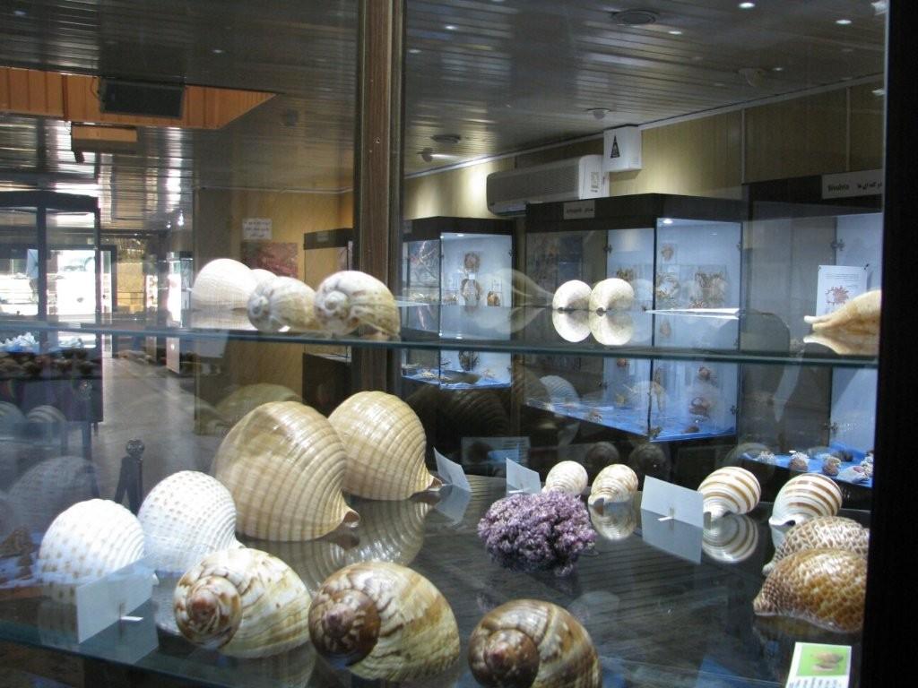 Isfahan Seashell Museum (6).jpg