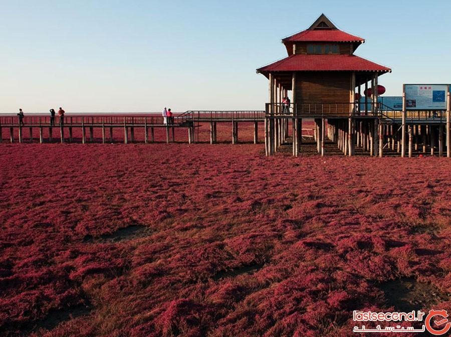 ساحل قرمز در چین