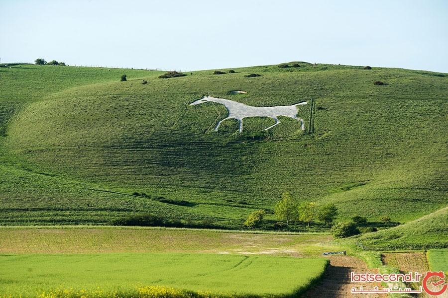 اسب سفید آلتن