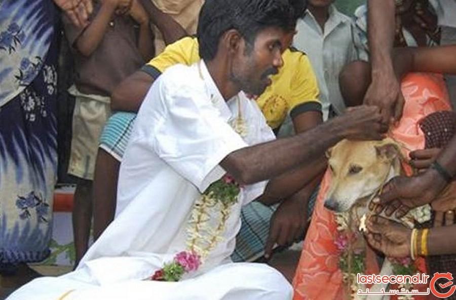 ازدواج با سگ در هند