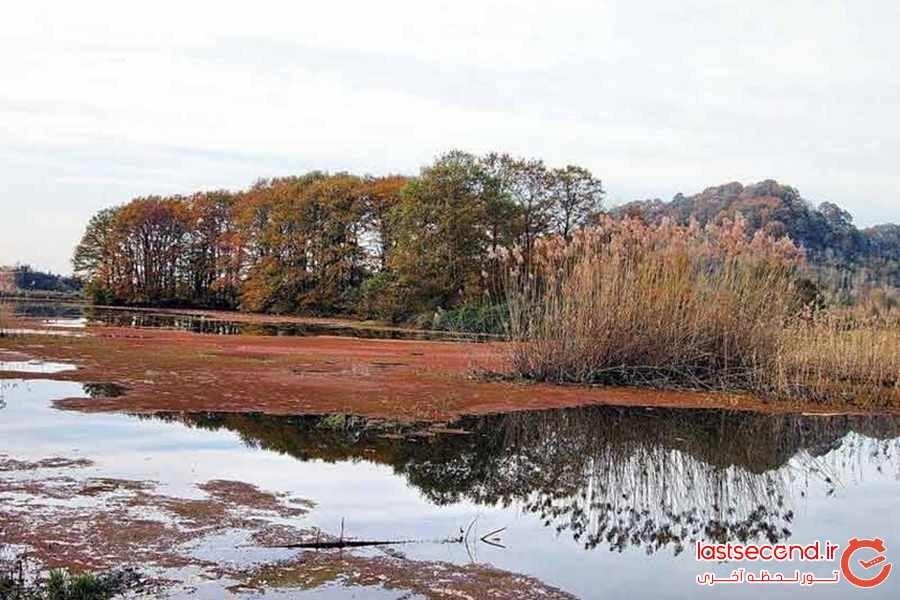 Soostan Lagoon (11).jpeg