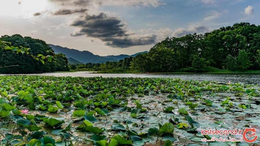Soostan Lagoon (8).jpeg