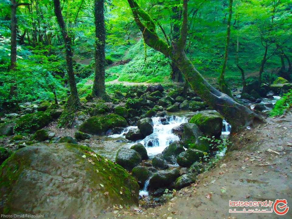 فومن تاریخ در دل طبیعت