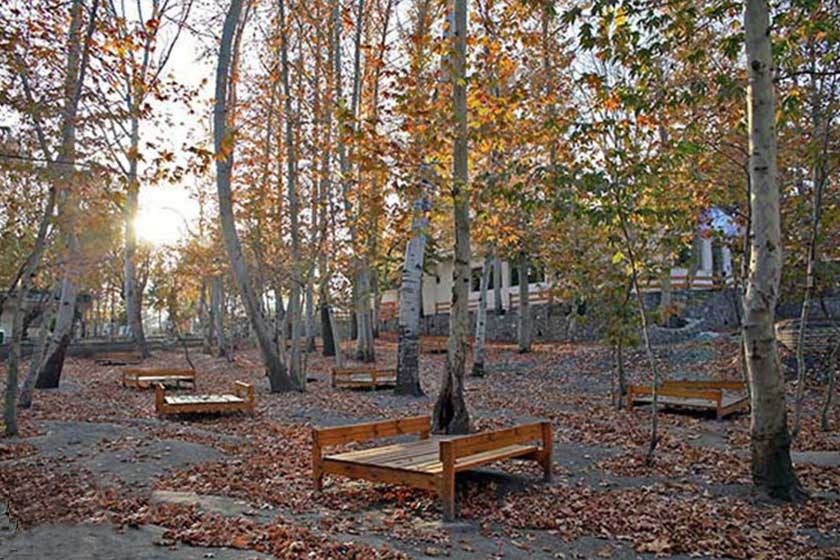 Park (2).jpg