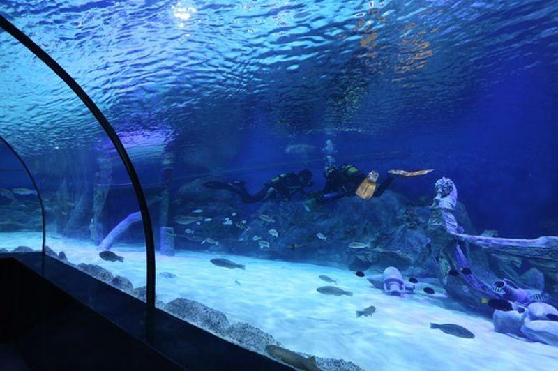 Isfahan Aquarium-13.jpg