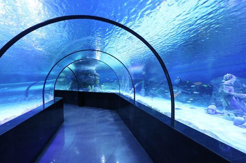 Isfahan Aquarium-10.jpg