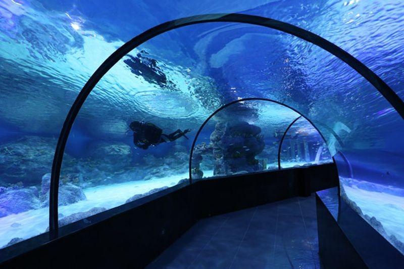 Isfahan Aquarium-12.jpg