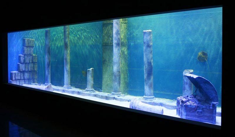 Isfahan Aquarium-09.jpg