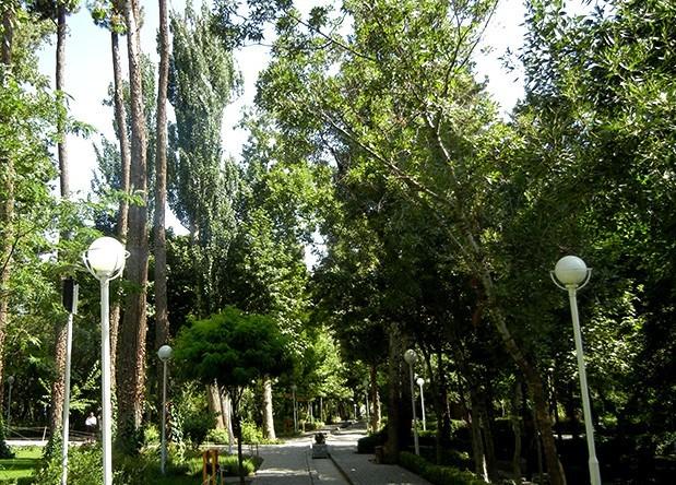 Park (6).jpg