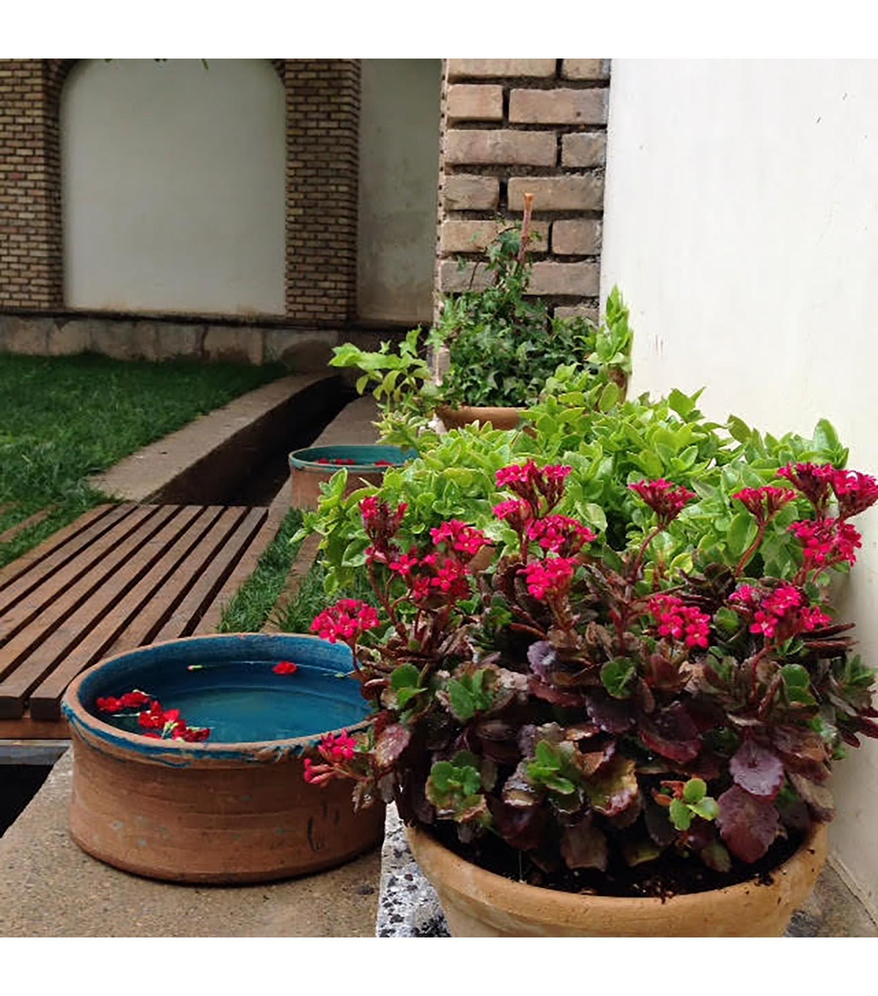 Pedari Guest House (5).jpg