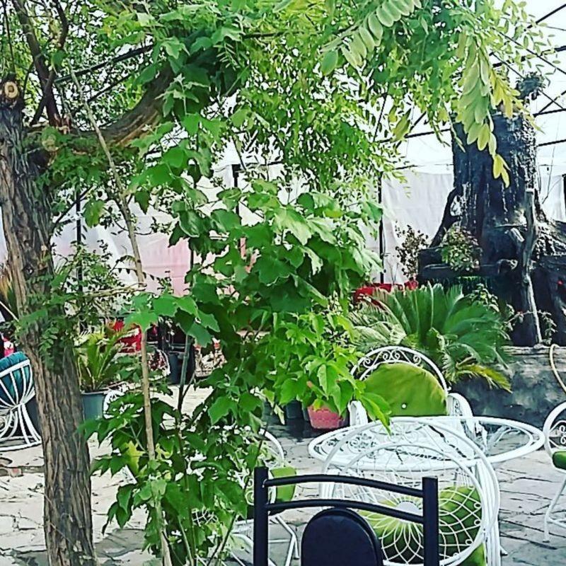 Sasan Restaurant (3).jpg