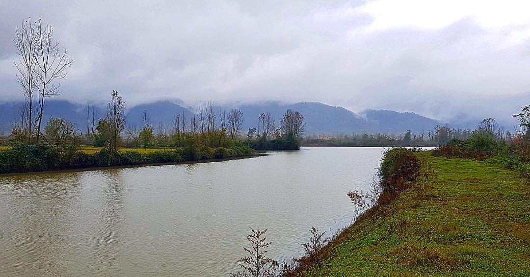 Azhdarak Wetland