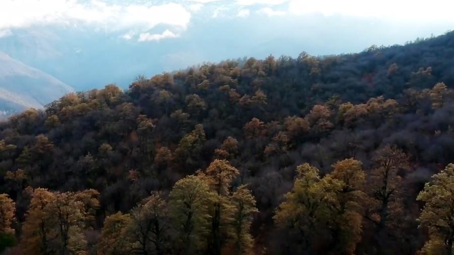 چند لحظه آرامش، بالگشایی بر فراز جنگل های افرا