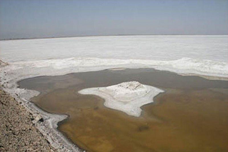 Meighan Wetland (1).jpg