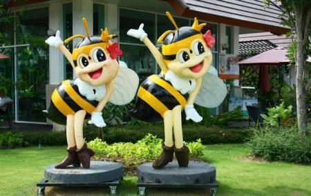 مزرعه بزرگ زنبور پاتایا