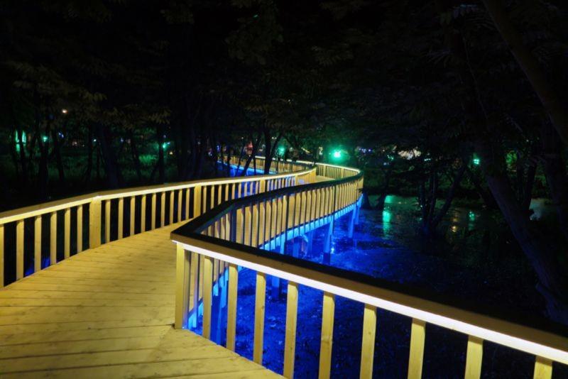Bridge of Bandar-e Anzali Bird Paradise Park