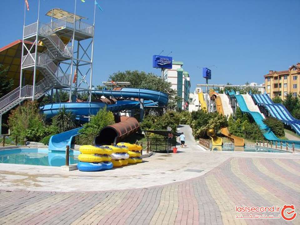 aqua-club-dolphin-8.jpg