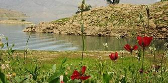 دشت سوسن؛ بهشت کوچک خوزستان