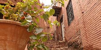 سفر به روستای گلگون ایران، ابیانه