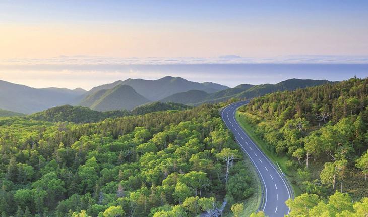 زیباترین و عجیب ترین جادههای آسیا