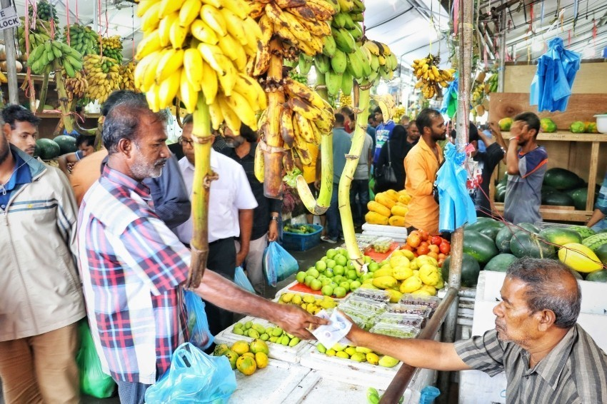 Local Fruit Market Male