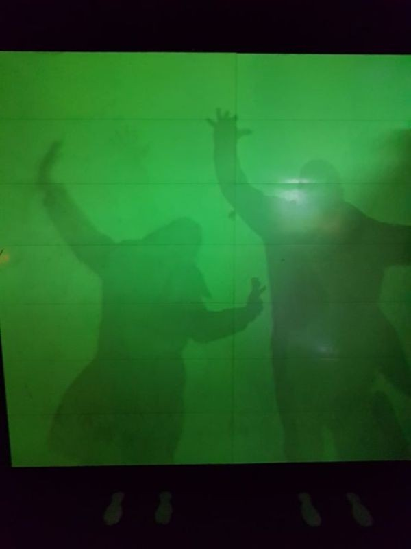 Camera Obscura and World of Illusions (2).jpg