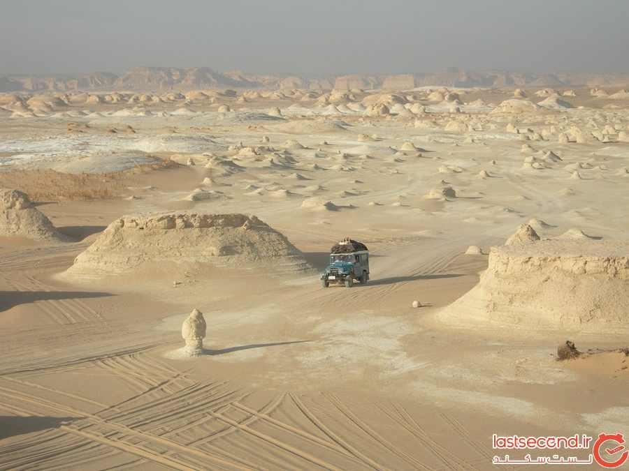 صحرایال بیدا