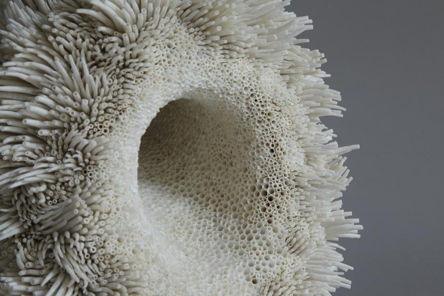 مجسمه های خارقالعاده ای که با هزاران صدف دریایی ساخته شده اند