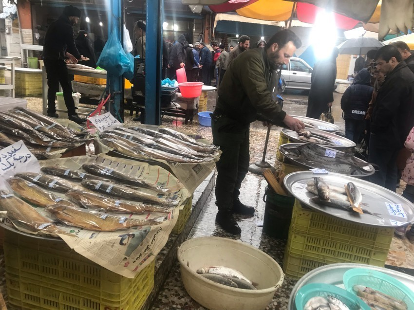 Fish Market Kiashahr