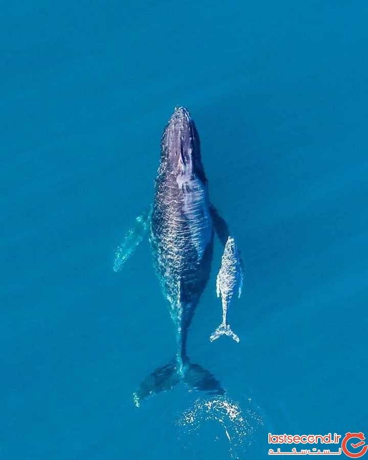 sean-scott-ocean-photography-13.jpg