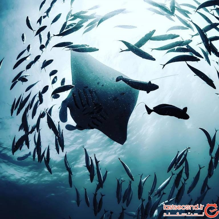 sean-scott-ocean-photography-5.jpg