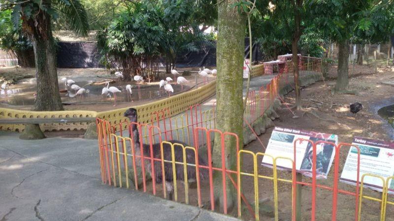 A Famosa Park Wild Life (3).jpg