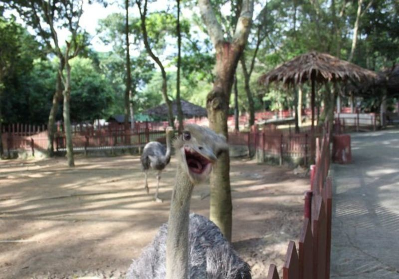 A Famosa Park Wild Life (4).jpg