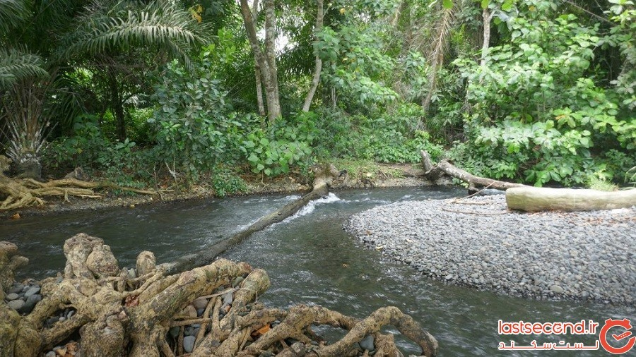 گینه استوایی