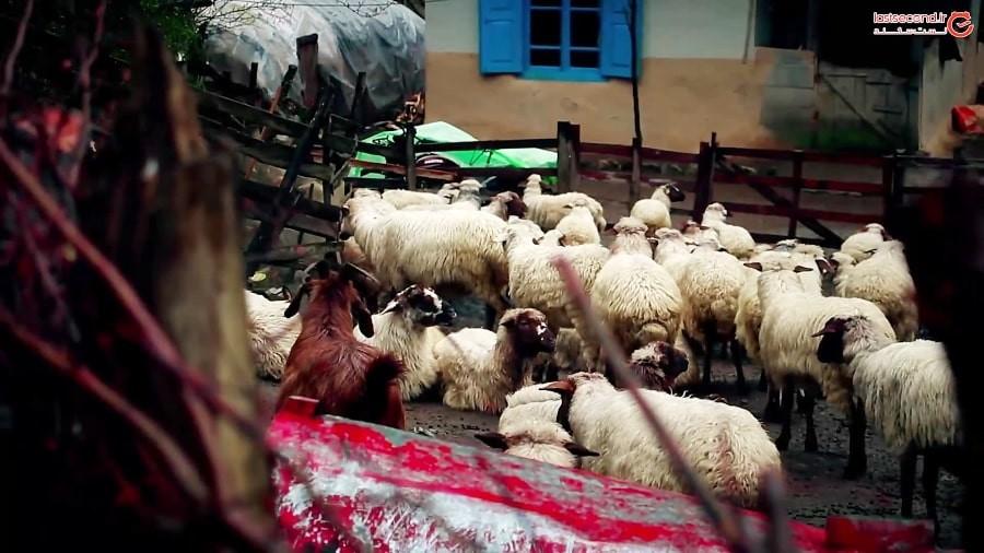 روستاگردی زمستانی در گیلان