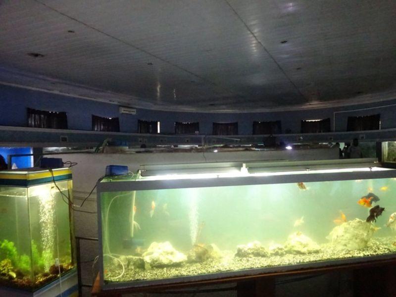 Batumi Aquarium (2).jpg