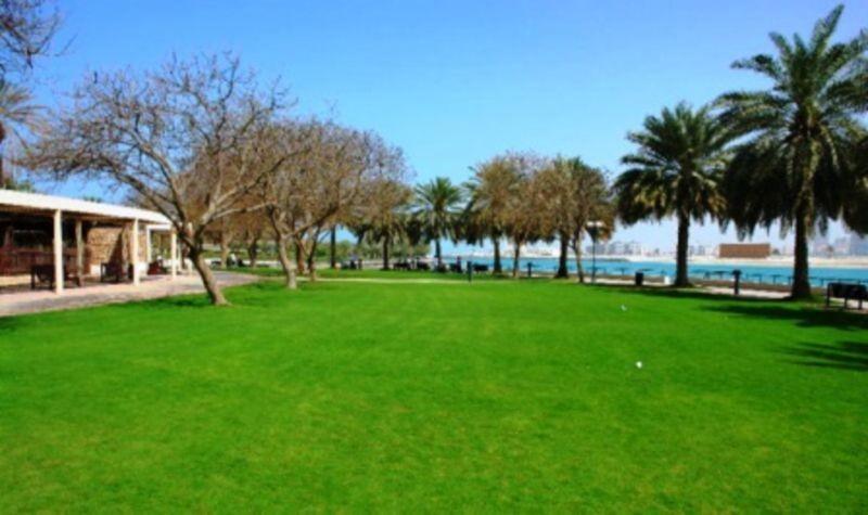 Zeytoon Park (4).jpg