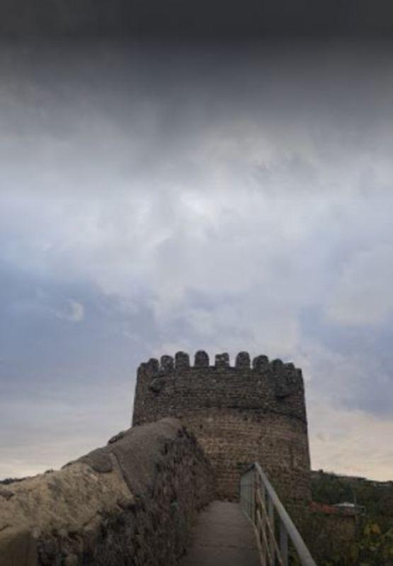 The Great Wall of Georgia (3).JPG